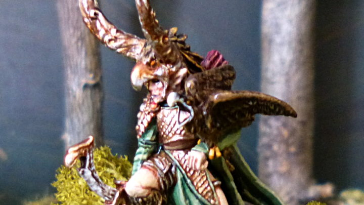 Seigneur elfe sylvain avec arc